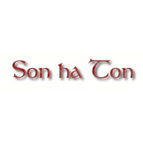Logo de SON HA TON